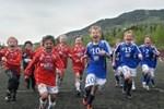 Halling Cup - Fotball